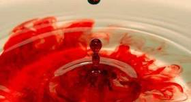 Características de la sangre