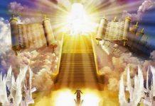 los diseños de Dios y el reino de luz