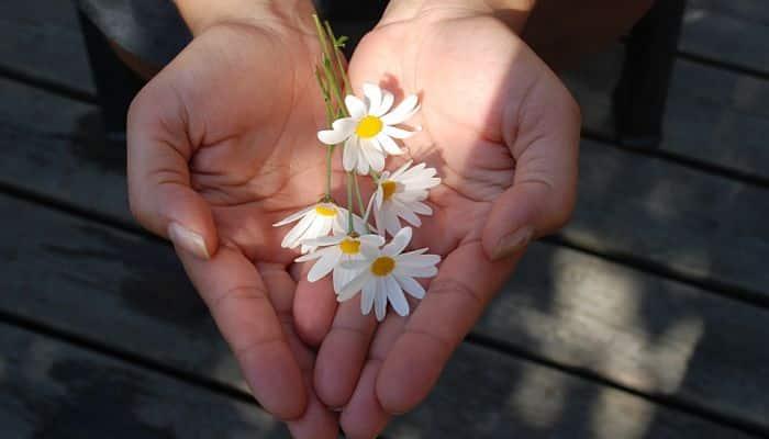 Dios ama al dador alegre