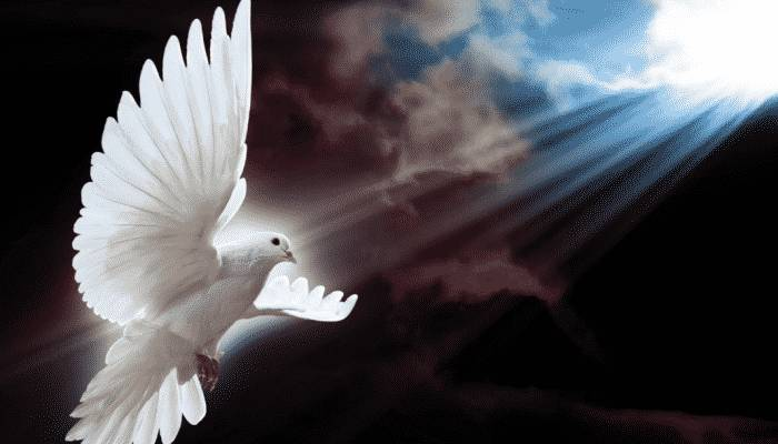 El espíritu santo habla
