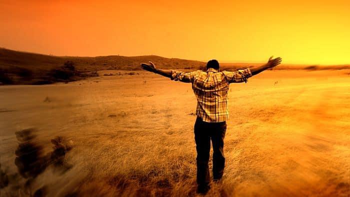 los que esperan en Jehová