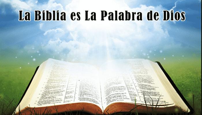 los propósitos de las escrituras- que enseña realmente la biblia