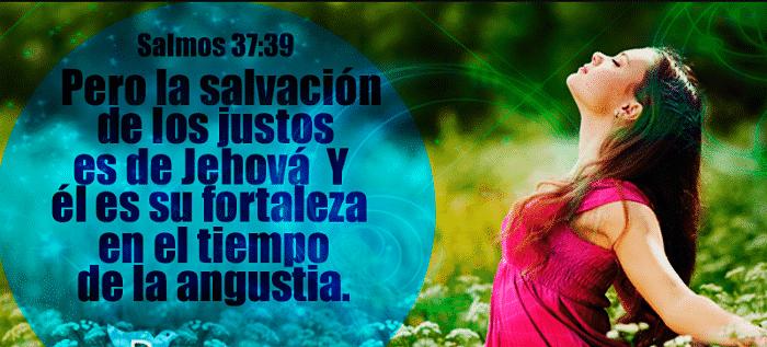 versículos de fortaleza en medio de las dificultades