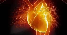 4 Cualidades Para Tener Un Corazón Según El Corazón De Dios.