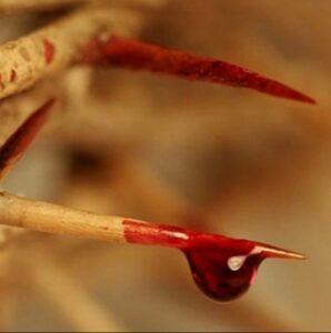 Los 7 Derramamientos de la Sangre de Jesús
